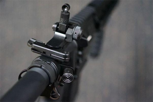 HK416Dのリアサイト