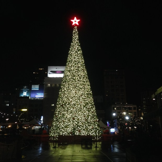 San Francisco Christmas Tree