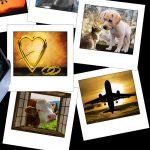 写真のデジタル化『フォトスキャン』…無料で劣化防止やスペース確保、終活も!