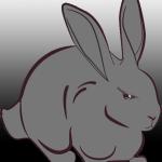今度はランサムウエア『Bad Rabbit』…簡単な感染対策は?