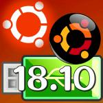 Live USB『Ubuntu 18.10』…ライブ起動で設定保存できる!