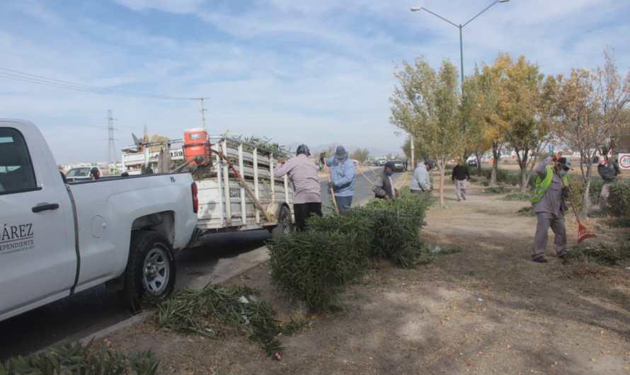 Av. Francisco Villarreal Torres, parte del operativo de limpieza