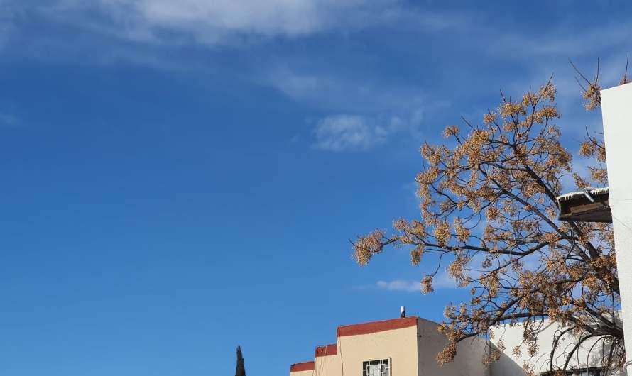 Se espera un día soleado, máxima de 22° C y mínima de 7° C