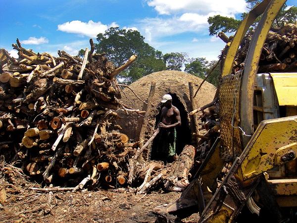 Carvoeiro no Tocantins trabalha em forno sem nenhum equipamento de proteção. Foto: MTE