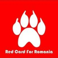 Stirea Ta: /  Your News: Andreea Dumitrescu- Craiova