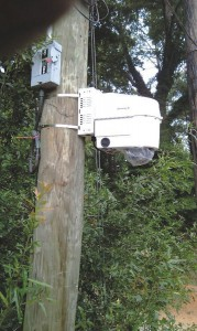 This state-of-the-art camera is one of several installed by the conservancy.
