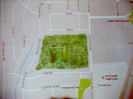 Citizens want to preserve nearly 30 acres of woodland near DeKalb-Peachtree Airport.