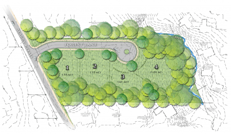 A rendering of the future Brookhaven Forest development.