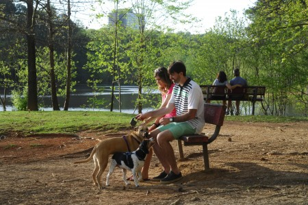 Maggie Wise, with her husband, Brett, and their two dogs Suzie and Kip relax during a stroll through Murphey Candler Park.