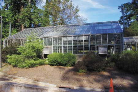 The Buckhean Men's Garden Club greenhouse, based at Atlanta History Center, will relocate to Oakland Cemetery this summer.