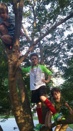 Trevor (in the tree), Natalie, left, and Logan Thompson, youngsters who live in the Georgetown neighborhood, enjoy the outdoors.