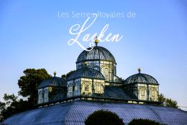 Serres royales Laeken Belgique