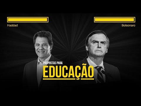 Quais são as propostas de Haddad e Bolsonaro para a educação?