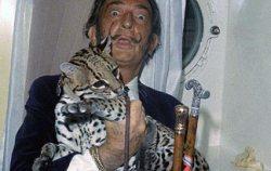 Salvador Dali e Babou