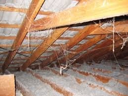 An attic lined with asbestos insulation. Because of asbestos' flame-resistant and insular properties, it's especially common in public and private structures built before the 1970s.
