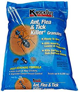 best ant killer for lawn