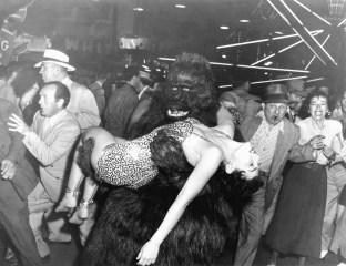 bobs-gorilla-file-1-180