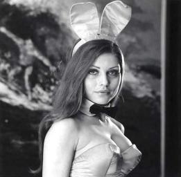 bunny35