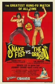 snake-fist-vs-the-dragon