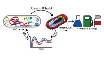 Scalable model building | Center for Reproducible Biomedical