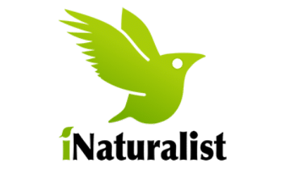 ReptiFiles proudly supports iNaturalis