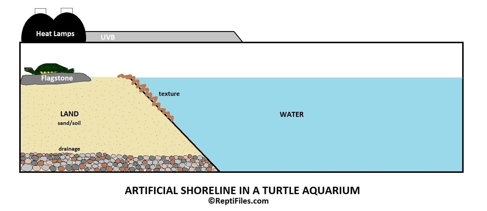 Aquarium shoreline illustration by ReptiFiles - red eared slider basking area