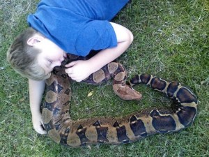 Red Tail Boa and Child