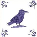 12 crow