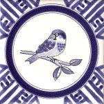 14 house sparrow