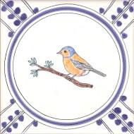 16 Chaffinch