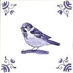 2 house sparrow