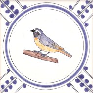 20 Common Redstart