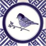 24 chaffinch