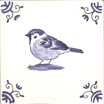 32 tree sparrow