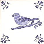 33 sparrow female