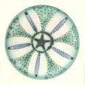 Diatom 18