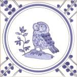 20 Owl 5 tile
