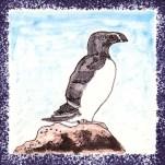 Seabird 15