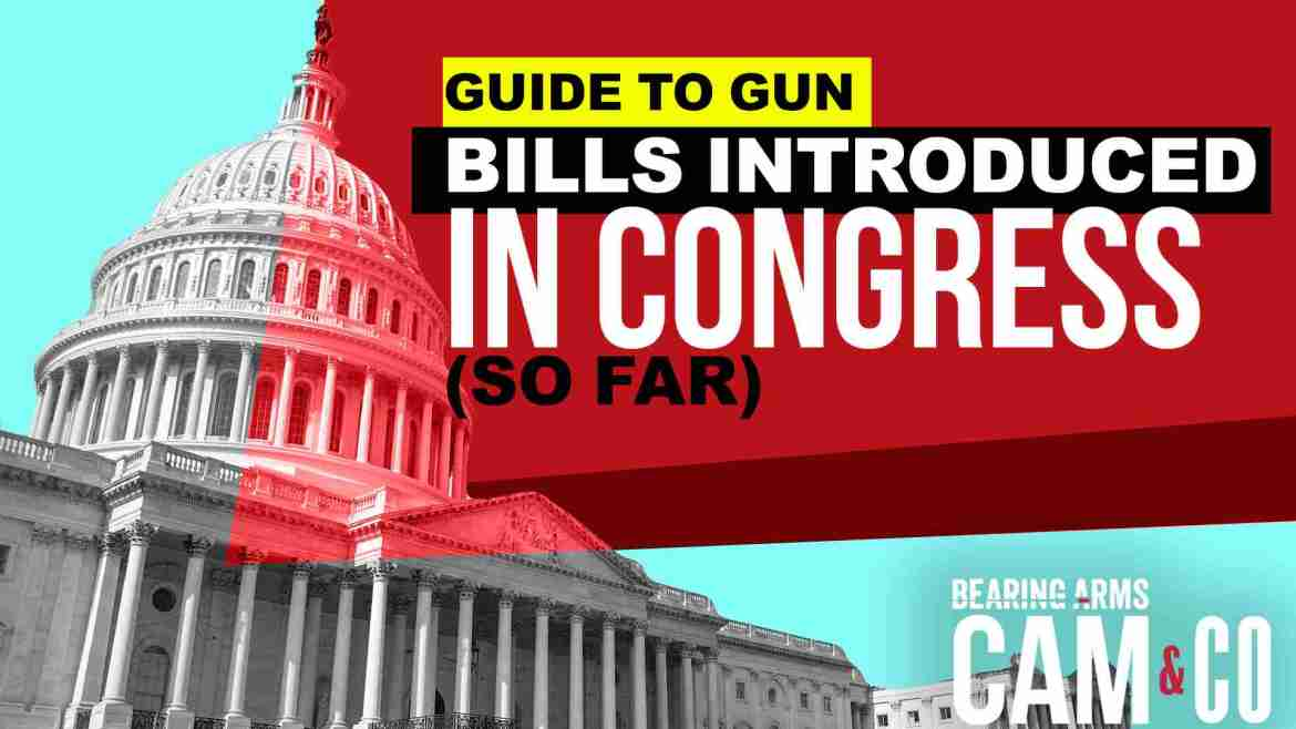 Your Guide To The Gun Bills Introduced In Congress (So Far)