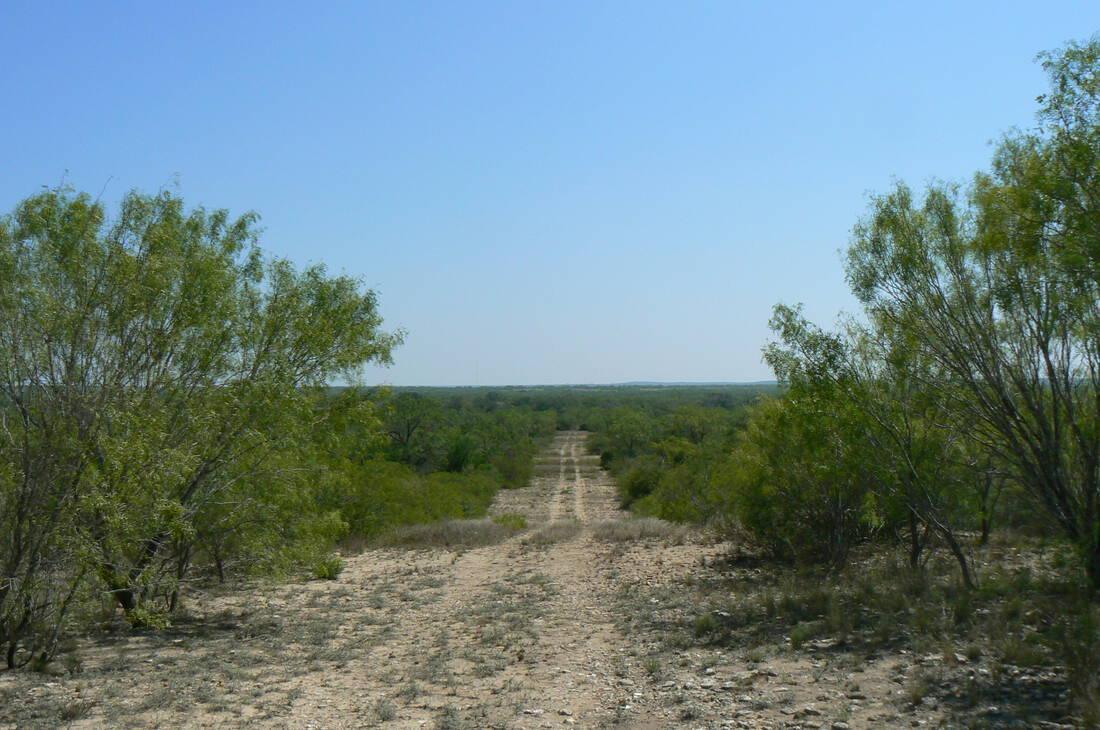 Home Texas Listings