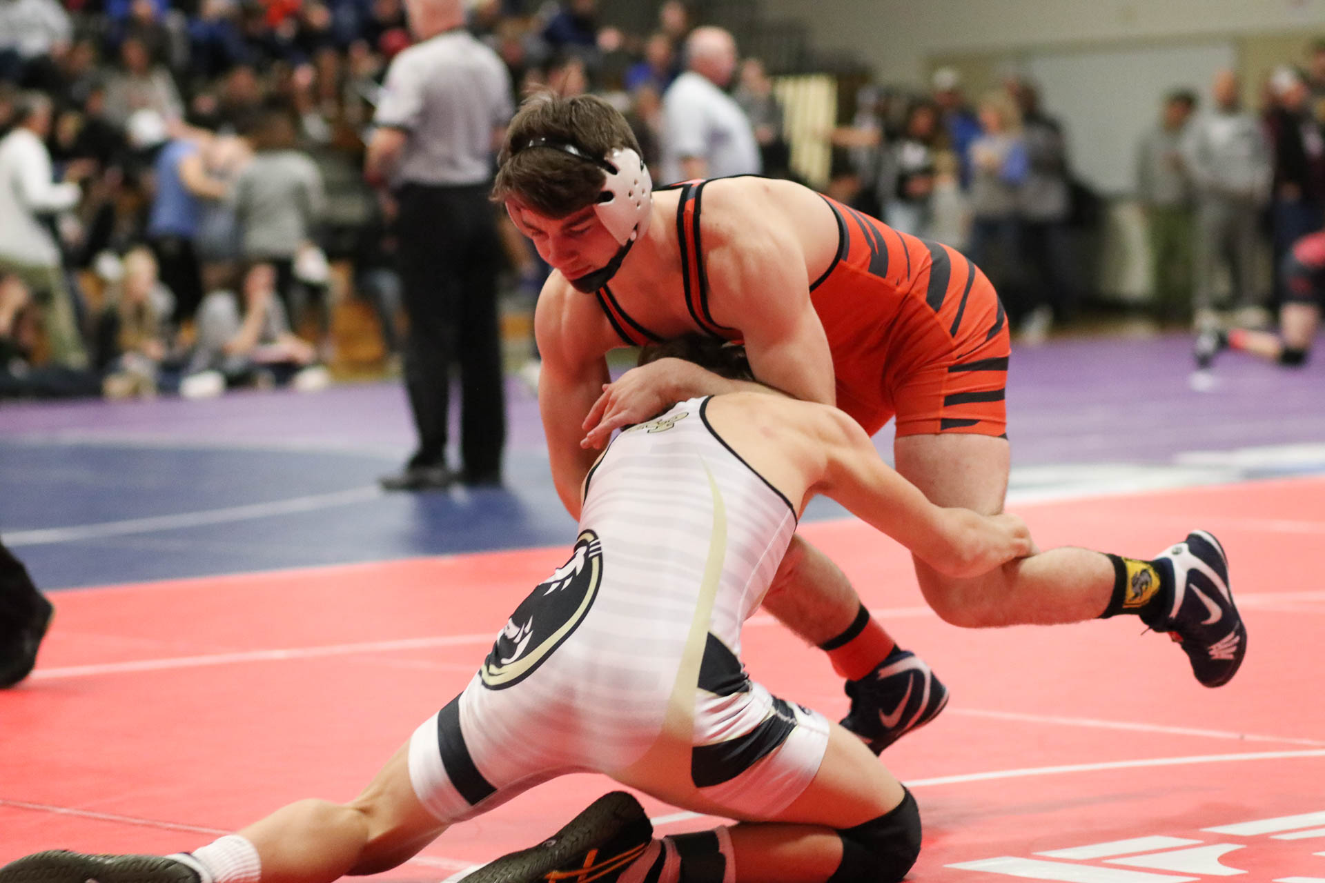 O'Connell Returns To Lead Tiger Wrestlers