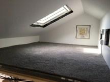 Carpet in the big loft.