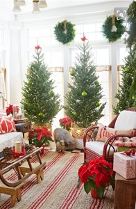 christmas-decorating-2016-6