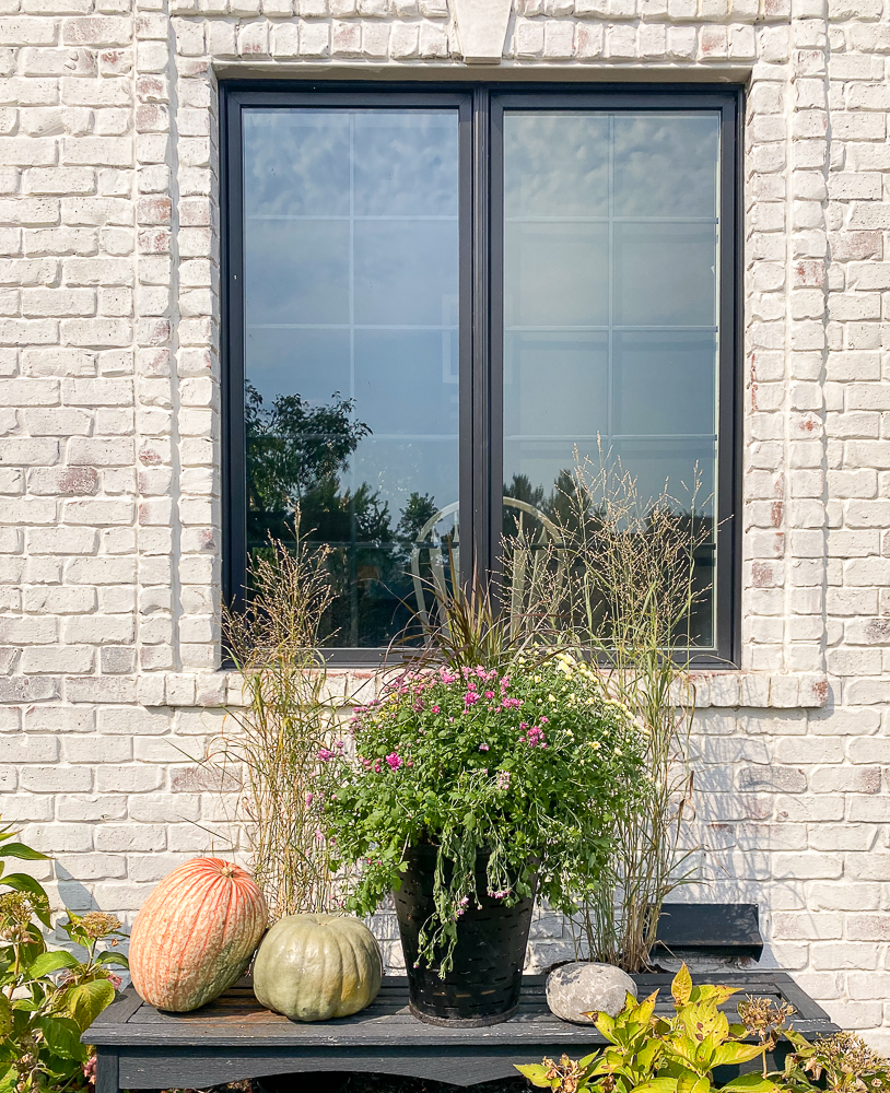 Front window with pumpkins, mums and ornamental grass