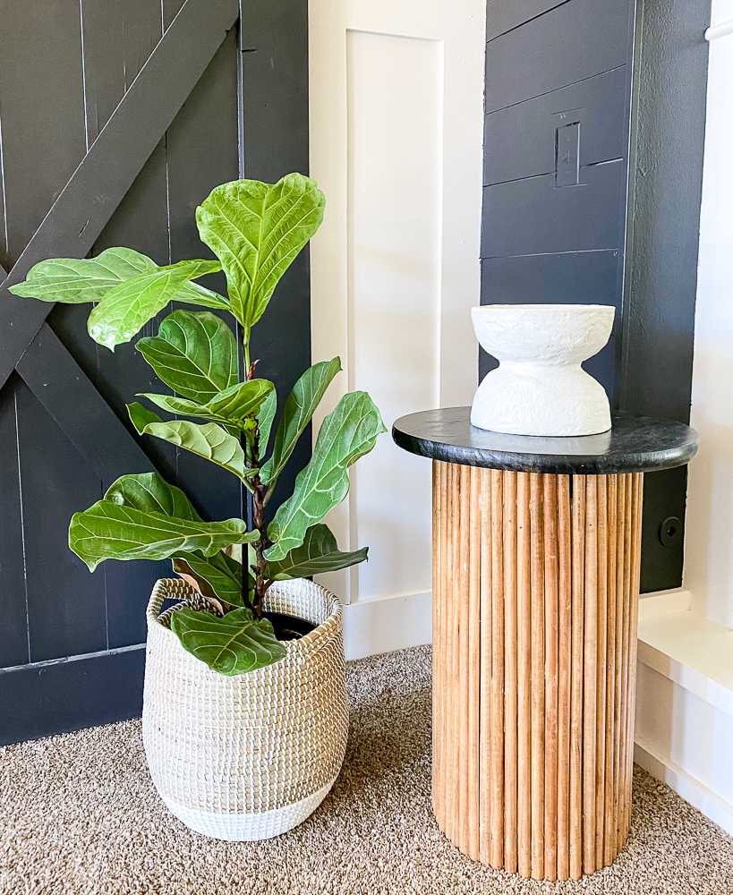 Fluted side table with a fiddle leaf tree