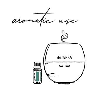 3 Ways to Use Oils- Aromatic Facebook and IG