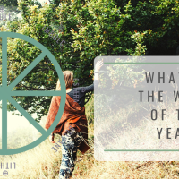 What is the Wheel of the Year?