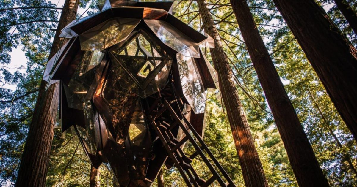 Pinecone Treehouse For Sale Is The Ultimate Nature Escape