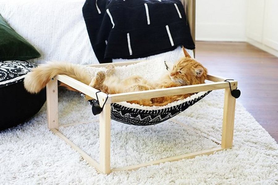 A hammock is one of the best items for relaxation ever, it instantly brings a holiday feel to any space. If you already have one for yourself, it's time to spoil your pets, too!