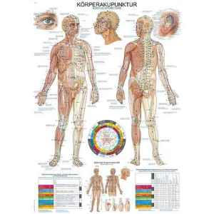 """""""Human Acupuncture"""" Wall Chart"""